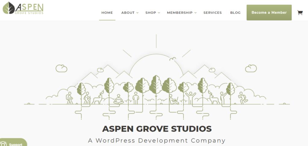 Aspen Grove Studios