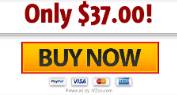 AdSightPro Commercial price